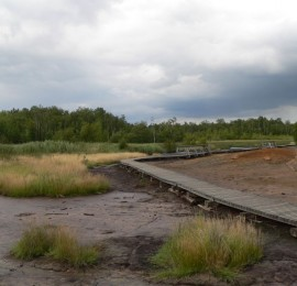 54. Přírodní rezervace Soos u Františkových Lázní