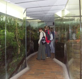 Krkonošské muzeum ve Vrchlabí