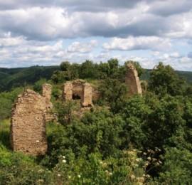 Zřícenina hradu Templštejn
